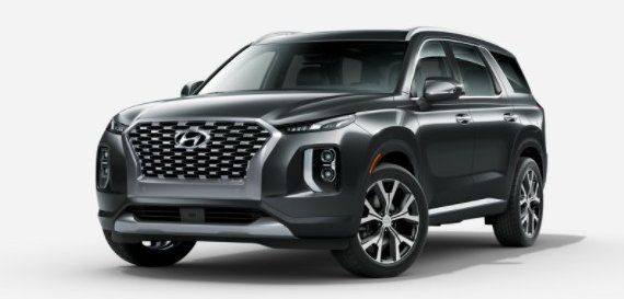 Hyundai Palisade paint choice